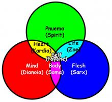 life soul mind heart and spirit christ s words in greek